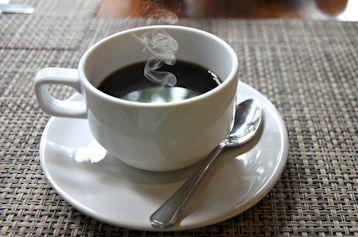 コーヒー病気の危険が急減