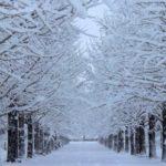 「ヒートショック」対策!冬の突然死は「潜病」と同じくらい怖い