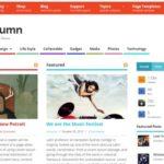 WordPress無料テーマMesoColumnのカスタマイズ日本語化と簡単設定