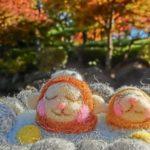 冷え性の方必見!蜜柑(みかん)&柚子(ゆず)風呂の美肌効果と健康効能!