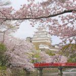 名城の桜めぐり!桜祭りもあり、夜桜の3点が揃って楽しめる桜の名所を紹介2016年
