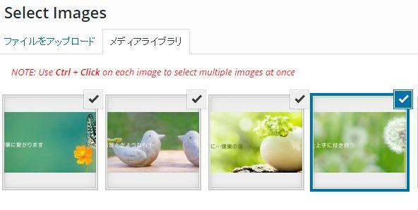 WordPressプラグインImage Slider