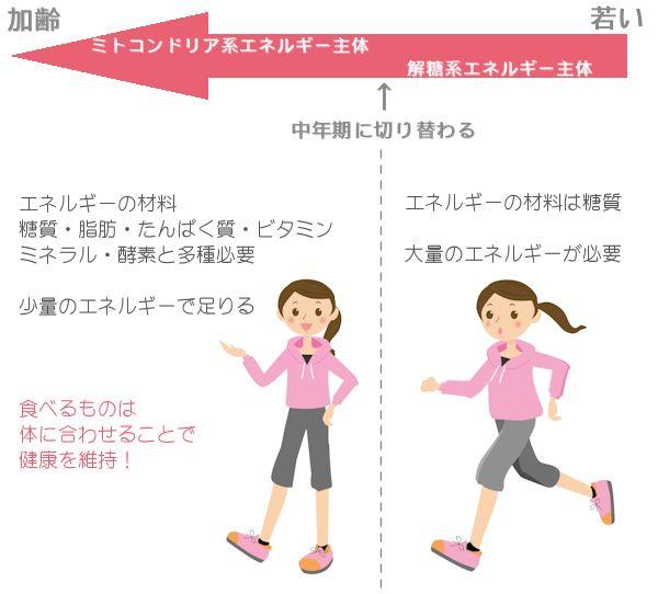 中年太りを健康でスリムに!体質転換期