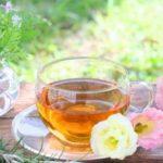 ルイボスティー効果は活性酸素を除去して健康美容に!発酵食品の効能