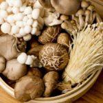 健康に『きのこ』栄養別美容健康12部門ランキング!10種類のキノコを徹底比較!ハナビラダケが優秀!