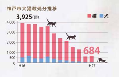 ふるさと納税で犬猫殺処分を食い止める