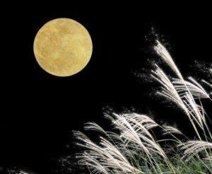 中秋の名月の日