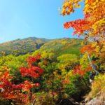 秋にかかる病気「突然死」の季節?気象病に気をつけることによって健康維持ができる