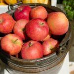 りんごの栄養は一日一個で医者いらずの効果!焼いたり熱を加えて栄養9倍に!