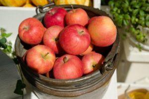 りんごの栄養には医者いらずの効果!