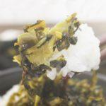健康志向【高菜漬け】たっぷりウコンの力が生きている乳酸発酵食品!美味しかったのでご紹介!