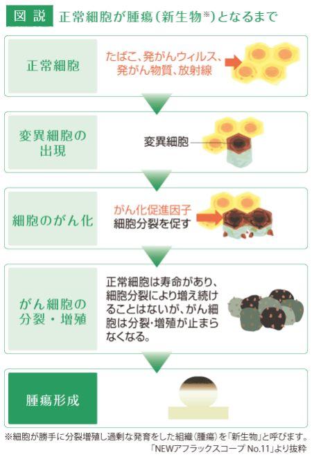 【癌・がん】どうしてガンになる?(1)メカニズムとなりやすい部位を知ろう