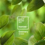 【2017年トレンドカラー】安らぎと復活の緑!パントン社カラー研究所が発表