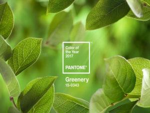 【2017年トレンドカラー】安らぎと復活の緑!パントン・カラー研究所発表