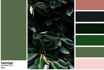 2017年を象徴するカラーは草木を思わせるグリーン
