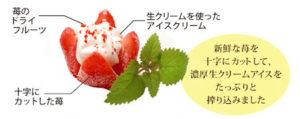 自然のままの苺アイス