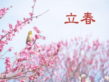 【如月】ていねいに暮らす-「立春」春を感じる風と初音