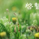 【弥生】啓蟄(けいちつ)虫が冬眠から目覚め活動を始める頃!