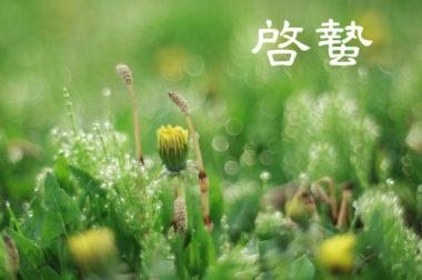 【弥生】啓蟄は虫が冬眠から目覚め活動を始める頃!春の大地のパワーがいっぱい
