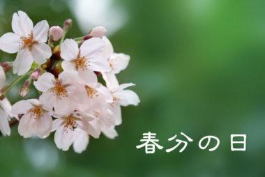 【弥生】ていねいに暮らす-3月「春分の日」先人の知恵とご先祖様に感謝の気持ちを!