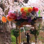 【甘茶】ダイエット・花粉アレルギー効果効能!甘くてカロリーゼロ!4月8日花祭りにお釈迦様にお供え!