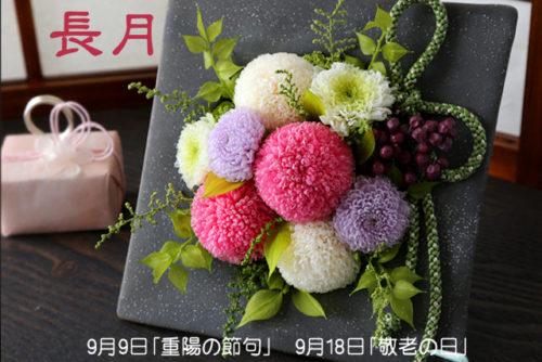 【長月】第3月曜日「敬老の日」は感謝!9月9日「重陽の節句」菊の花で不老長寿を願う
