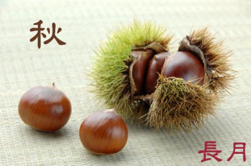 【長月】9月旬の食材と季節の変わり目の秋バテを解消する方法!