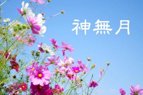 【神無月】秋は旬の食べ物とスポーツで体を整え、秋の七草・読書などで心を整える!
