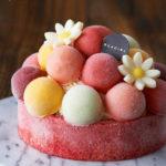 アイスケーキの大人気リスト!かわいい!美しい!センスいいデコレーション!大切な日…クリスマスやお正月に!