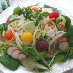 野菜を麺状にしてヘルシー料理!ベジヌードルカッターで大根ペペロンチーノ!簡単レシピ3選