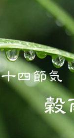 二十四節気の春【穀雨-こくう】4/20~5/4頃:山が笑う!植物たちが息吹く季節!八十八夜を迎える
