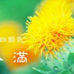 二十四節気の夏【小満-しょうまん】5/21~6/5頃:心臓と血管に負担をかける季節