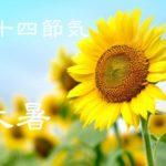 二十四節気の夏【大暑-たいしょ】7/23~8/7頃の猛暑に耐える食事と「夏の万能薬味レシピ」