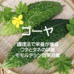 ゴーヤは調理法で栄養が増減!ワタとタネの栄養とモモルデシン効果効能!