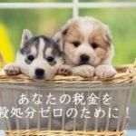 【ふるさと納税】あなたの税金を殺処分ゼロのために!災害救助犬になり人の命を救う