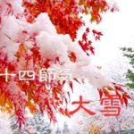 二十四節気の冬【大雪-たいせつ】12/7~21頃:冷え性や風邪に注意